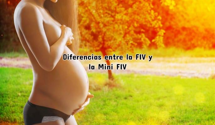 Diferencias entre la FIV y la Mini FIV