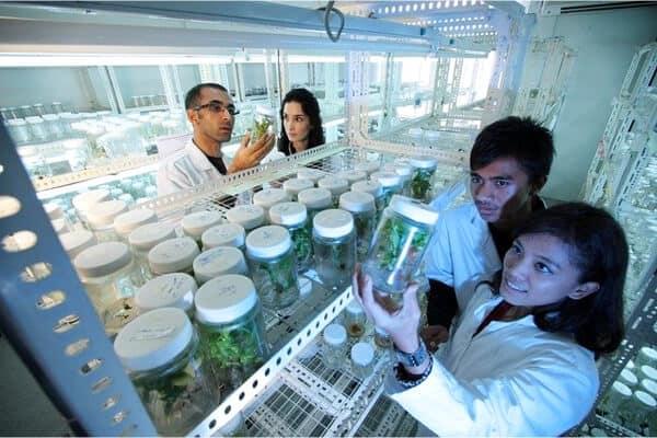 laboratorio cientifico con personas trabajando