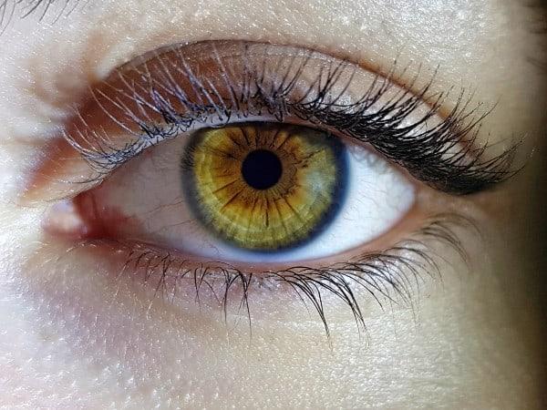 ojo cristalino